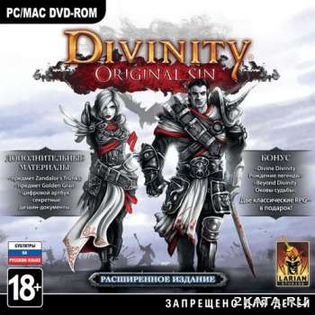 Divinity: Original Sin + DLC (2014) (RUS/ENG) (PC) Steam-Rip / RePack